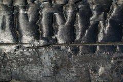 Ett bränt till kol stycke av trä. Royaltyfri Foto