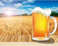 Ett bra exponeringsglas av öl på tabellen på ljus bakgrund av ett vetefält Royaltyfria Bilder