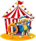 Ett cirkustält baktill av clownen med en cirkel av brand Royaltyfria Bilder