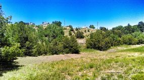 Ett Colorado landskap royaltyfri foto