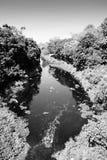 Ett damm i indisk by arkivfoton