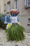 Ett diagram av en kvinna med blommor Royaltyfria Foton