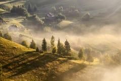 Ett dimmigt landskap för härlig höst med ensamma hus och soliga kullar Det Carpathian lantliga landskapet på solnedgång i höst fä Arkivbild