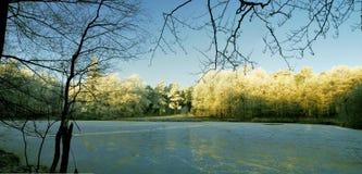Ett djupfryst damm Fotografering för Bildbyråer