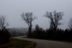 Ett drev till och med dimman Royaltyfri Fotografi