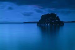 Ett enkelt träd i vattnet Arkivbild