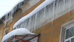 Ett enormt nummer av stora smältande istappar på taket av huset i vinter arkivfilmer