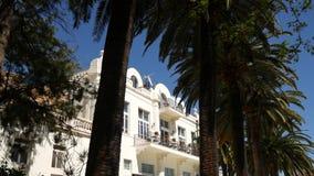 Ett enormt vitt mång--våning gods i palmträd Herceg Novi, måndag stock video