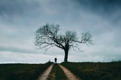 Ett ensamt spöklikt diagram under ett träd på en stormig vinterdag Arkivfoton