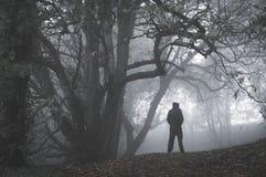 Ett ensamt spöklikt med huva diagram anseende på en bana i en vinterskog på en dimmig dag Med dämpat kornigt redigera royaltyfria bilder