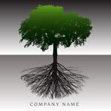 Ett eteriskt träd rotar bakgrund royaltyfri illustrationer