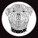 Ett etniskt djur Klottra modellen wild hund Stock Illustrationer