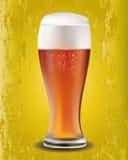 Ett exponeringsglas av öl Arkivbilder