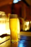 Ett exponeringsglas av öl i stången Arkivfoto