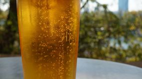Ett exponeringsglas av öl på bakgrund av floden Sommar och öl Arkivbilder