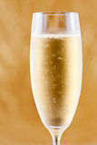 Ett exponeringsglas av champagne Royaltyfri Bild