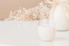 Ett exponeringsglas av mjölkar, och en kanna av mjölkar på marmortabellen Royaltyfri Fotografi