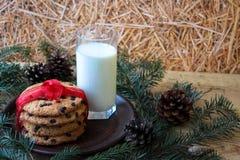 Ett exponeringsglas av mjölkar och kakor för jultomten royaltyfri foto