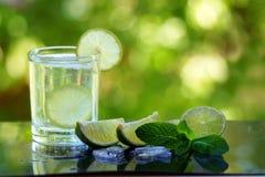 Ett exponeringsglas av mojito med limefruktskivor och aloe vera Arkivfoto