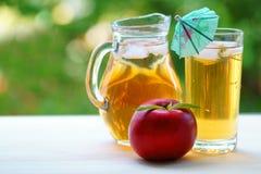 Ett exponeringsglas av ny äppelmust med is och paraplyet Fotografering för Bildbyråer