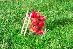 Ett exponeringsglas av ny mogen röd jordgubbe- och stegebenägenhet mot ett exponeringsglas begrepp för av högsta kvalitet organis Arkivbilder
