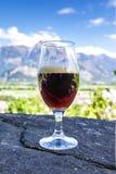 Ett exponeringsglas av nytt öl på bakgrunden av bergen arkivbild