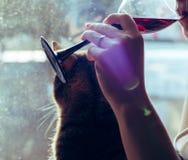 Ett exponeringsglas av rött vin i händerna av en flicka arkivbilder