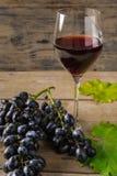 Ett exponeringsglas av rött vin nära druvor på trälantlig bakgrund arkivbilder