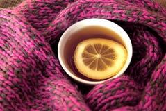 Ett exponeringsglas av te och den varma halsduken Fotografering för Bildbyråer