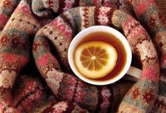 Ett exponeringsglas av te och den varma halsduken Royaltyfria Foton