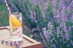 Ett exponeringsglas av uppfriskande lemonad över en trästol Blommande lavendel blommar i bakgrunden Royaltyfri Foto