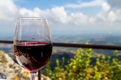 Ett exponeringsglas av vin i Italien arkivfoto