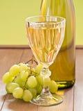 Ett exponeringsglas av vitt vin Royaltyfria Foton