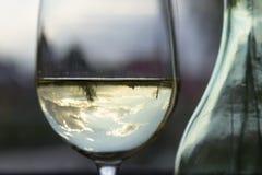 Ett exponeringsglas av vitt vin och en flaska Fotografering för Bildbyråer