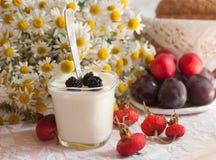 Ett exponeringsglas av yoghurt, en bukett av kamomillar och en platta av mogna plommoner på ett ljus snör åt yttersida som dekore Royaltyfri Fotografi