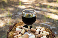 Ett exponeringsglas med korkar för ett rött vin och vinpå en stubbe på en bakgrund av en sommarskog arkivbild