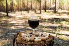 Ett exponeringsglas med korkar för ett rött vin och vinpå en stubbe på en bakgrund av en sommarskog arkivfoton