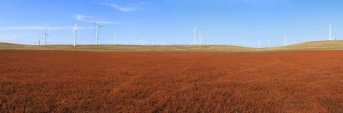 Ett fält av windturbiner Arkivfoto