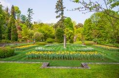 Ett färgrikt och nyanserar sorter av tulpanblommor i parkera royaltyfri fotografi