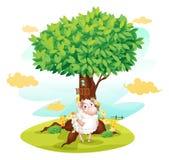Ett får som rymmer en tom skylt bredvid en treehouse Royaltyfria Bilder