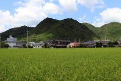 Ett förorts- liv i Japan Hus bredvid ricefield Pic var tagandet Royaltyfri Fotografi