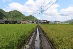 Ett förorts- liv i Japan Hus bredvid ricefield Pic var tagandet Royaltyfria Foton