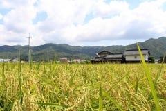 Ett förorts- liv i Japan Hus bredvid ricefield Pic var tagandet Royaltyfri Foto