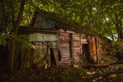 Ett förstört hus i skog Arkivfoto