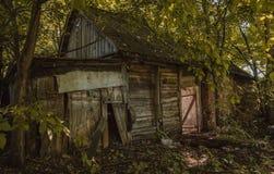 Ett förstört hus i skog Royaltyfria Foton