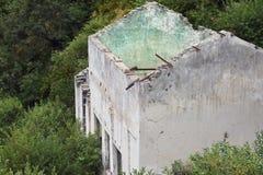 Ett förstört vitt hus utan ett tak under överflödande vegetation, inifrån väggarna av huset en ljus grönaktig färg Royaltyfria Bilder