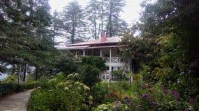 Ett familjhus i en buskig gräsplanträdgård royaltyfri bild