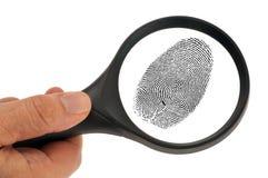 Ett fingeravtryck undersökte med ett förstoringsglas royaltyfri bild