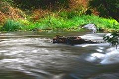 Ett flodflöde med lång exponering royaltyfri foto