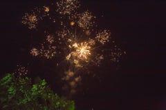 Ett foto av en honnör i natthimlen Ljus textur av festliga fyrverkerier Abstrakt feriebakgrund med olik färgfirewor Arkivbild